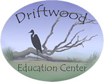 Driftwood Education Center Logo