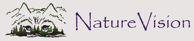 Nature Vision Banner