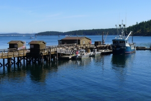 Photo of Dock at Friday Harbor Labs (Taken by Meghan Oxley)